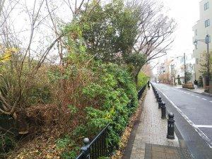 20191230tamagawa.jpg